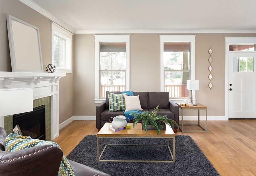 Boston Pet Friendly Apartment Rental Services Boston