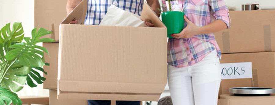 landlord services list apartment for rent boston dorchester ma