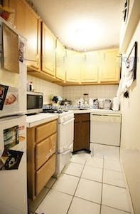 Brighton 1 Bed 1 Bath Boston - $1,750 No Fee