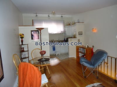Northeastern/symphony Apartment for rent 3 Bedrooms 1 Bath Boston - $3,900