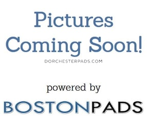 Dorchester Apartment for rent 5 Bedrooms 1 Bath Boston - $3,600