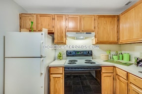 Dorchester Amazing, Affordable, Luxury 3-Bed 1.5 Bath! Boston - $3,200