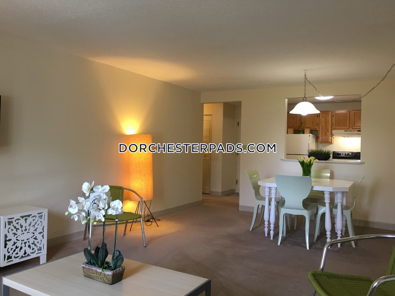 Dorchester Apartments | Dorchester Apartment for rent 1 ...
